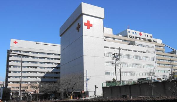Le Japon est bien connu pour sa longue espérance de vie. C'est en grande partie dû à son système de soins. (Image : Wikimedia CC0 1.0)