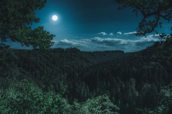 La fête de la Lune est en réalité la seconde fête la plus importante de l'année en chine, après la fête du Printemps. (Image :Florian Kurz/Pixabay)