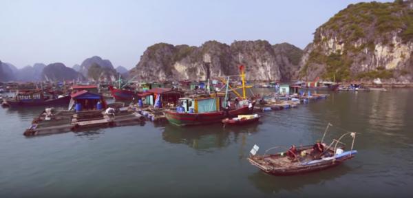 Le bateau sur lequel ils ont séjourné pour découvrir la baie. (Capture d'écran/ Youtube)