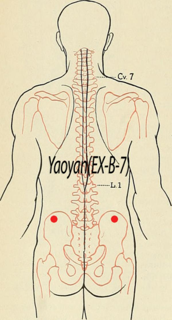 Point d'acupuncture Yaoyan EX-B-7
