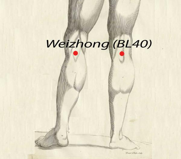 Point d'acupuncture Weizhong BL40