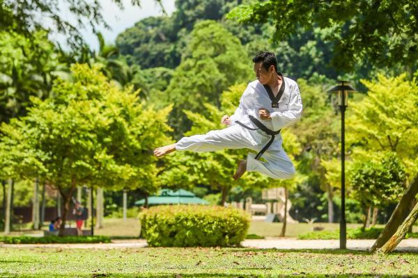 Histoire du Kung Fu
