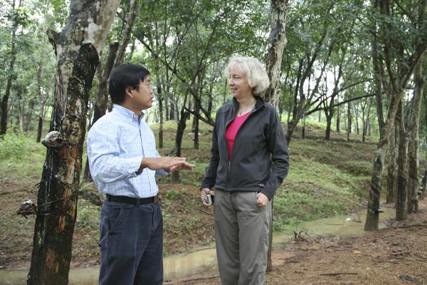 Gretchen Daily, biologiste de Stanford, et Hua Zheng, auteur principal de l'étude, effectuent des recherches sur une plantation conventionnelle à Hainan, en Chine. (Image: Zhiyun Ouyang).