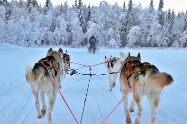 La Finlande est connue pour être l'un des pays où l'air et l'eau sont parmi les plus purs  d'Europe. (Image: pasja1000/Pixabay)