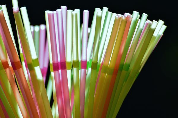 En mars de cette année, l'Union européenne a approuvé une loi visant à interdire les articles en plastique à usage unique comme les couverts, les pailles et les cotons-tiges d'ici 2021. (Image : Alexas_Fotos / Pixabay)