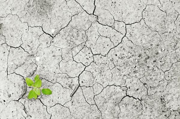 Les pénuries d'eau toucheront 5 milliards de personnes d'ici 2050. (Image : Andreas160578/ Pixabay)