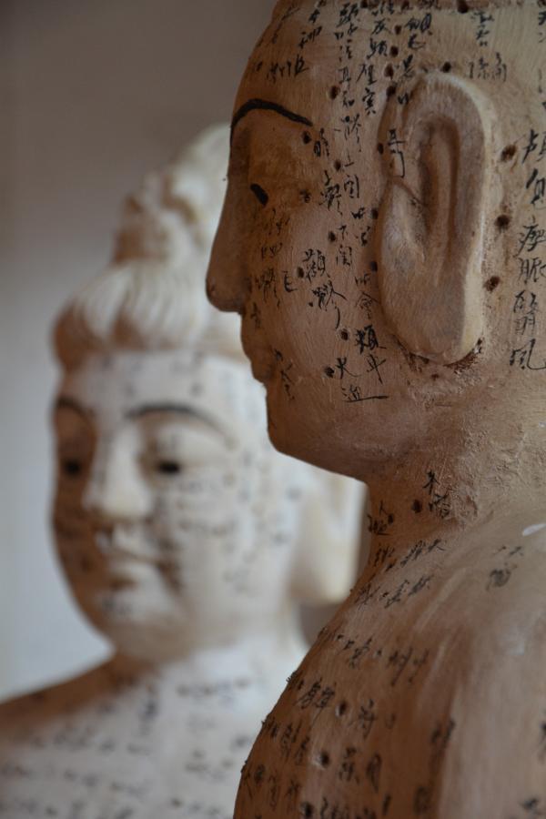 Les méridiens d'acupuncture sont traditionnellement considérés comme des canaux qui relient la surface du corps aux organes internes. (Image : DrFranck / Pixabay)