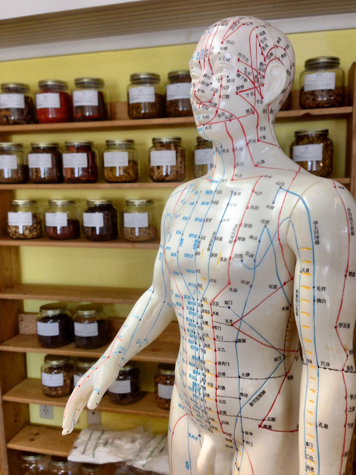 L'acupuncture corrige les blocages du qi qui causent ces douleurs et, lorsqu'elle est utilisée correctement, elle peut réduire l'hypersensibilité associée à la douleur neuropathique (Image: Bekaschiller / Pixabay).