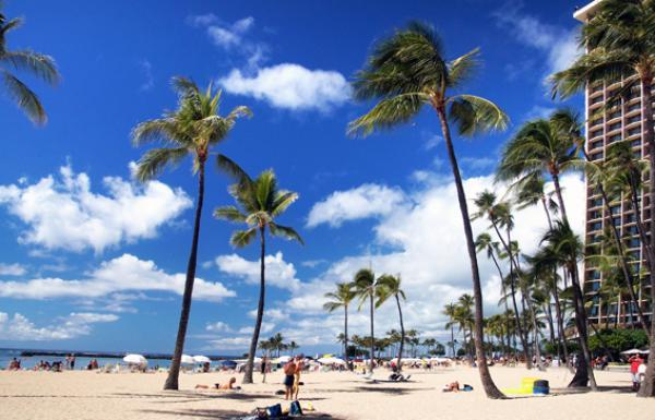 Le co-fondateur d'Oracle Corporation, Larry Ellison, a acheté près de 98 % de l'île hawaïenne de Lanai. (Image/ PIixabay)