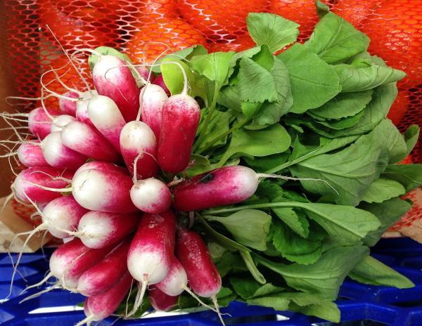 Les radis ont des propriétés anticancéreuses, de soulagement de la poitrine, de mucosités dissolvantes et des propriétés diurétiques. (Image: Jackman34 / Pixabay)