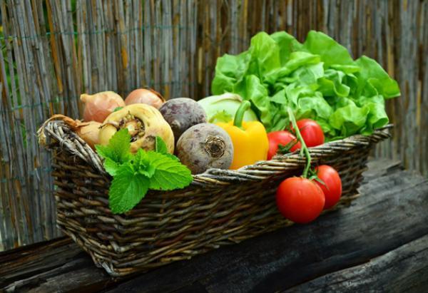 10 aliments qui peuvent tuer les cellules cancéreuses (Image: congerdesign/Pixabay)