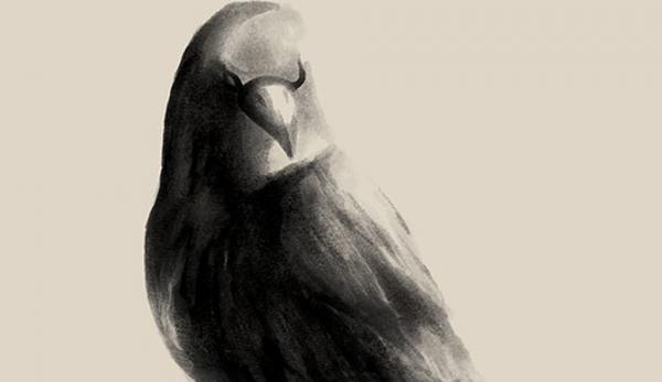 Dans «Illusion» et «Éveil» de Kim Hoa Tram, le personnage principal est un oiseau (Image: Pixabay)
