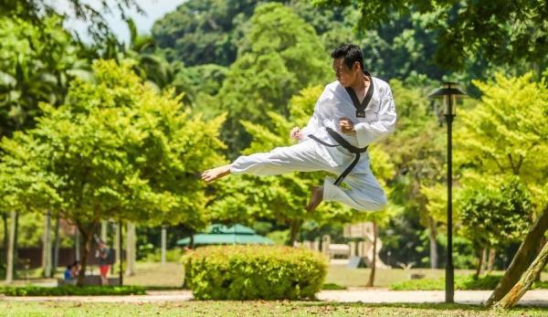 Les grands Maîtres en arts martiaux ne dévoilent pas facilement leurs talents et leurs capacités. Même face à une attaque, ils n'utiliseront leurs capacités que si c'est une question de vie ou de mort. (Photo : danieltayxs/Pixabay)