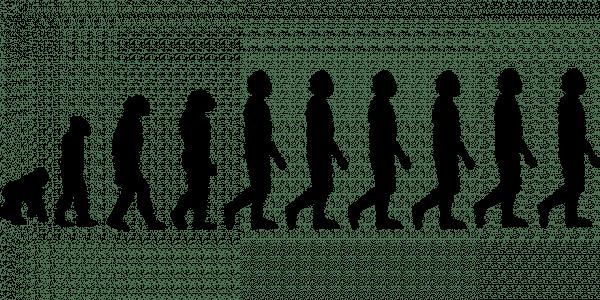 La théorie de Darwin avance que l'évolution est la transformation du monde vivant au cours du temps.. Les résultats que les scientifiquesobserventà présent ne sont pas les mêmes. L'archéologie n'a jamais rien trouvé comme preuves tangibles pour expliquer comment on a évolué d'une espèce à l'autre etquel était l'état transitoire entre le singe et l'Homme. (Image: Pixabay.com)