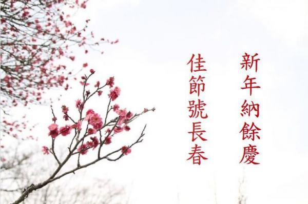 Caractère Fu à l'envers. (Image : Sound of Hope)