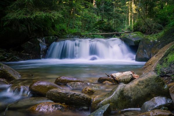 Omniprésente sur terre, l'eau occupe 70% de la surface terrestre. Les deux tiers de notre corps sont constitués d'eau.