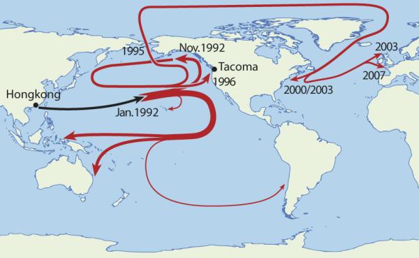 Vortex de déchets du Pacifique Nord. Il est constitué de déchets en lien avec l'impact de l'activité humaine. Il forme ce qu'on appelle le septième continent et est aussi connu sous le nom de «soupe de plastique», ou «grande zone d'ordures du Pacifique». (wikimedia : NOAA / domaine publique]