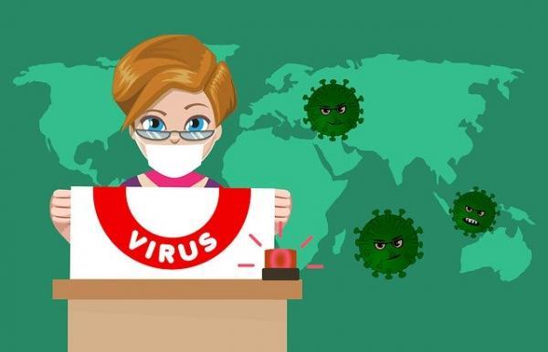 Les chauves-souris peuvent être porteuses de maladies telles que les coronavirus et la rage, mais ces maladies ne constituent pas un danger pour l'homme, à moins que l'homme n'entre en contact avec le sang ou la salive des chauves-souris. (Image :mohamed Hassan/Pixabay)