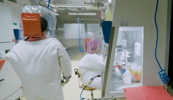 Le lieu de l'origine de la transmission du coronavirus à l'homme serait peut-être l'Institut de virologie de Wuhan. (Image : Capture d'écran /YouTube)