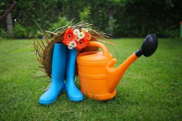 La vie secrète des jardins : le potager (3/3)