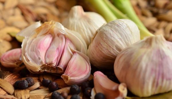 L'ail : un antibiotique naturel