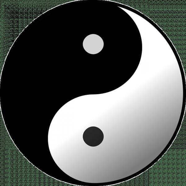 Selon la théorie de la médecine traditionnelle chinoise, la raison pour laquelle une personne peut être infectée par un virus est qu'il n'y a pas suffisamment d'énergie «yang» dans le corps. (Image :OpenClipart-Vectors/Pixabay)
