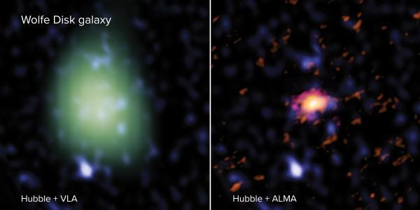 Le disque Wolfe vu avec ALMA (droite - en rouge), VLA (gauche - en vert) et le télescope spatial Hubble (les deux images - bleu). À la lumière radio, ALMA a regardé les mouvements et la masse de la galaxie de gaz atomique et de poussière et le VLA a mesuré la quantité de masse moléculaire. À la lumière UV, Hubble a observé des étoiles massives. L'image VLA est faite dans une résolution spatiale inférieure à l'image ALMA, et semble donc plus grande et plus pixélisée. (Image : ALMA (ESO/NAOJ/NRAO), M. Neelema