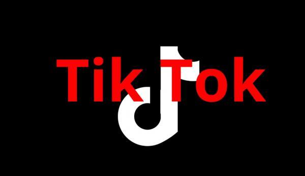 L'application TikTok suscite des inquiétudes