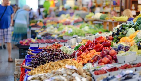 Avec un régime alimentaire approprié, votre cerveau peut former de nouvelles connexions neurales, modifier les connexions existantes et réagir de manière différente. (Image : pixabay/CC0 1.0)
