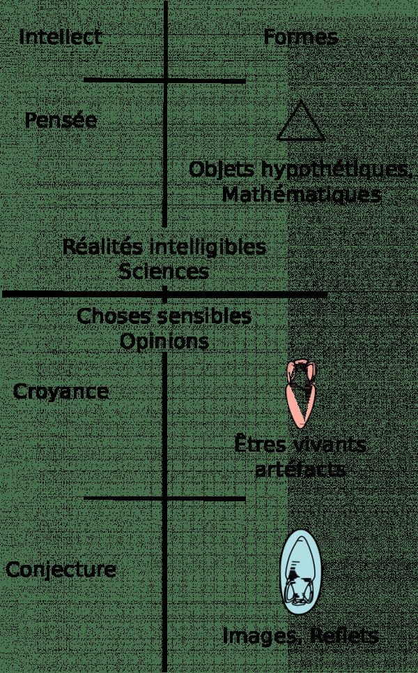 'analogie de la ligne de Platon: l'opinion se fonde sur le monde sensible tandis que la science se construit sur la connaissance des réalités intelligibles. (Image : Wikimedia / Platón-Vonalhasonlat.svg: Gothika / CC BY-SA)