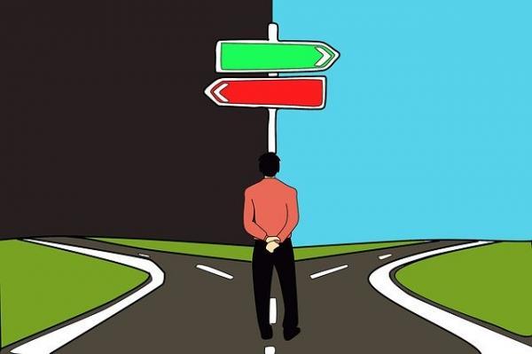 Il y a deux forces opposées au cœur de chaque être humain: l'une positive et l'autre négative… (Image :waldryano/Pixabay)