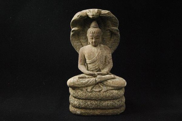 Le roi nâga protégeant Bouddha Sakyamuni. (Image :Pexels/Pixabay)