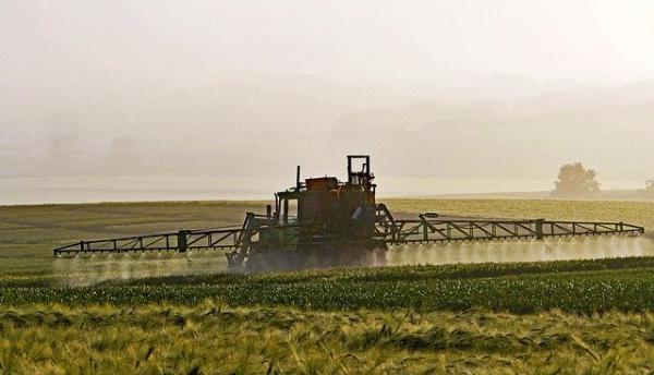 Les produits phytosanitaires créent provisoirement une meilleure production avant de tuer la terre. (Image :Erich Westendarp/Pixabay)