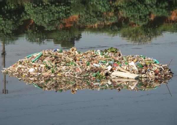 Macro et micro plastiques étouffent la vie dans l'eau. (Image :Rafael_Neddermeyer/Pixabay)