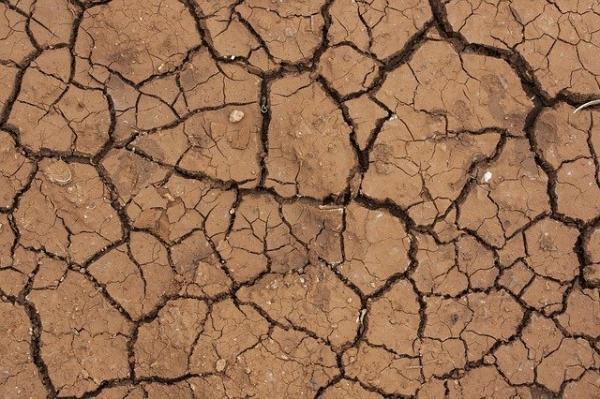 La terre vit, il faut la nourrir si on ne veut pas qu'elle devienne stérile. (Image :Engin Akyurt/Pixabay)
