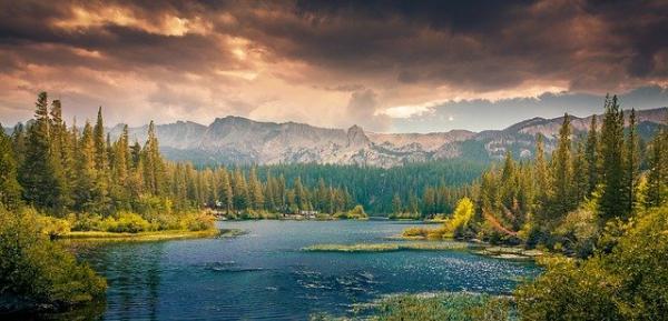 Rendre les berges des rivières à la nature permet de limiter les inondations