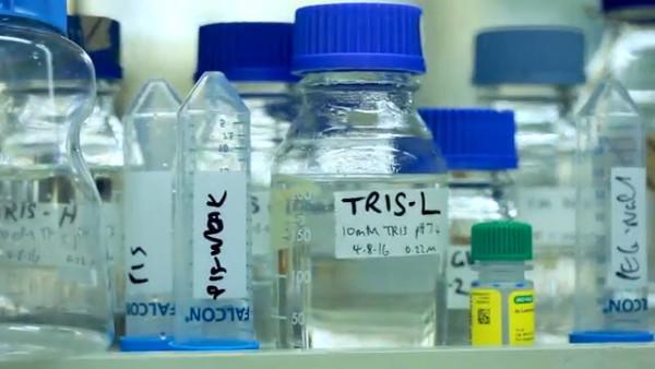Le CSIRO est un organisme gouvernemental australien qui participe à la recherche scientifique de pointe. (Image : Capture d'écran /YouTube)
