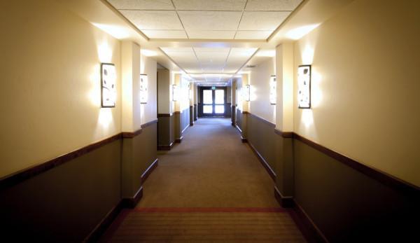 Le réceptionniste leur a offert sa propre chambre tandis qu'il restait à la réception cette nuit-là. (Image : pixabay/CC0 1.0)