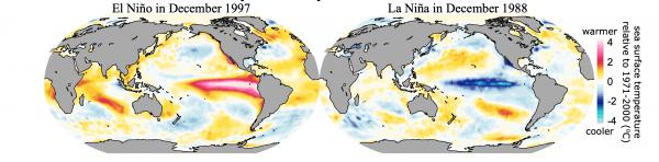 1997 El Nino avec l'eau chaude (en rouge), et 1988 La Nina avec l'eau froide (en bleu) dans le Pacifique. (Image : University of Hawaiʻi at Mānoa)