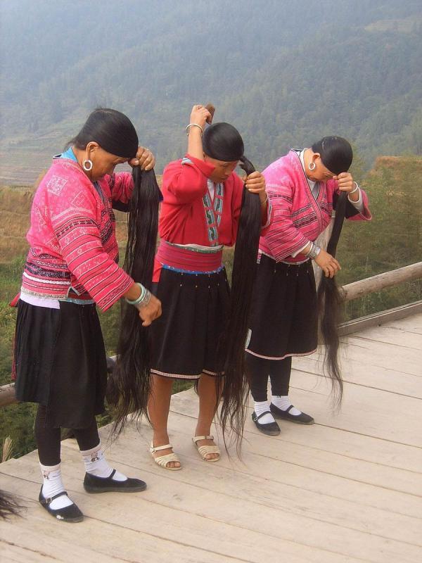 Les femmes de la tribu des Yao ont de très longs cheveux qu'elles rincent à l'eau de riz fermenté pour les fortifier. Peut-être que Raiponce était Yao? (Image : Wikimedia /Vberger / Domaine public)
