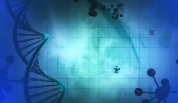 La Chine pense que les futures guerres pourraient comporter des attaques génétiques. (Image :Pixabay/CC0 1.0)
