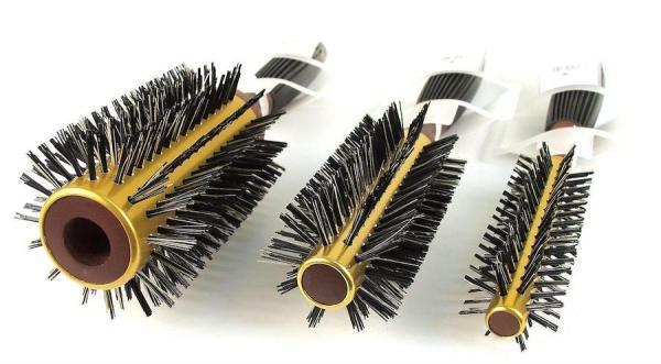 Un brossage fréquent des cheveux aiderait à prévenir les maux de tête, les problèmes d'oreilles, le blanchiement et la chute des cheveux. (Image :freeimages/CC0 1.0)