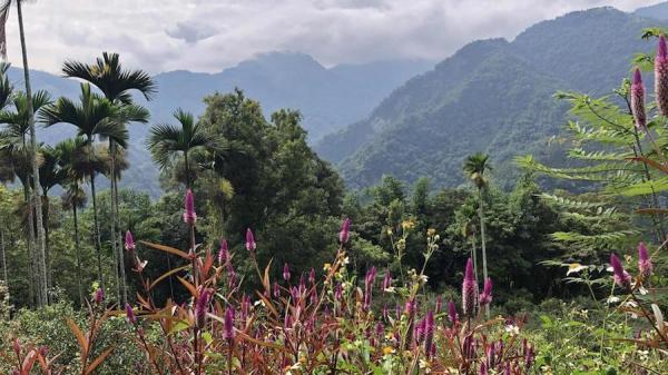 Le sentier historique de Caoling dans le sud de Taiwan est une attraction touristique populaire. (Image : Billy Shyu / Vision Times)
