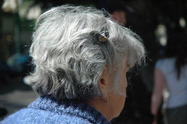 La génétique est à l'origine des cheveux blancs, l'hérédité est la transmission du patrimoine génétique d'une génération présente à la suivante. (Image : 该图片由 / Julia Mirvis / 在 / Pixabay / 上发布)
