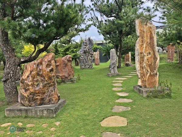Il existe de nombreuses expositions de bois pétrifié au temple Dazhishan Xuankong. (Image : Billy Shyu / Vision Times)