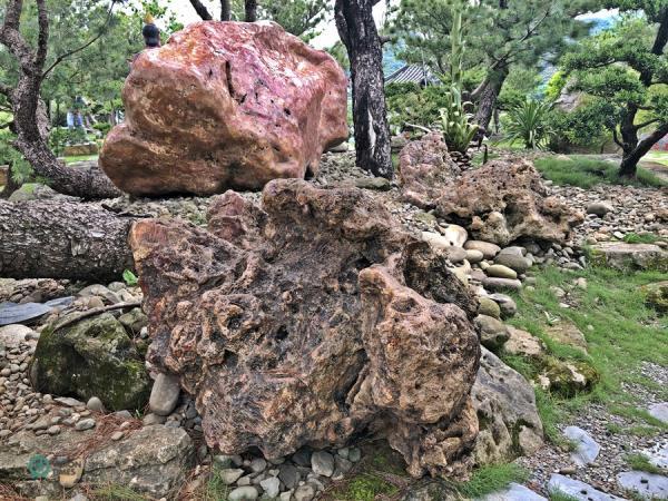 Il existe une grande variété de pierres aux formes étranges dispersées dans le jardin. (Image : Billy Shyu / Vision Times)