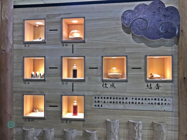 Bois d'agar et produits issus du bois d'agar exposés au musée de la forêt du bois d'Agar de ChengLin. (Image : Billy Shyu / Vision Times)
