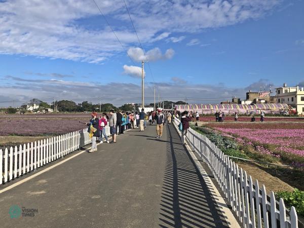 Le festival des fleurs de mesona est le seul du genre au monde. Il est très populaire dans le nord de Taiwan. (Image: Billy Shyu / Vision Times)
