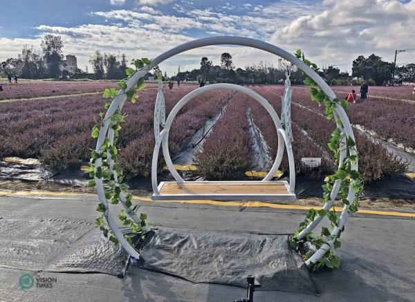 L'installation artistique permettant aux visiteurs de prendre des photos du champ de mesonas. (Image: Billy Shyu / Vision Times)