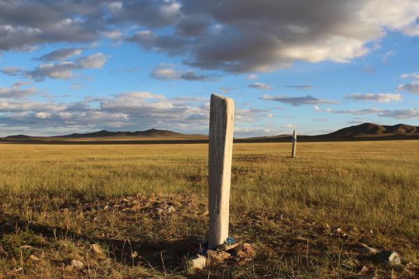 Pierre de cerfavec des sculptures datant de l'âge du bronze mongol. (Image : William Taylor)